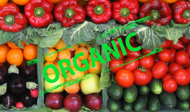 9111d63-organic