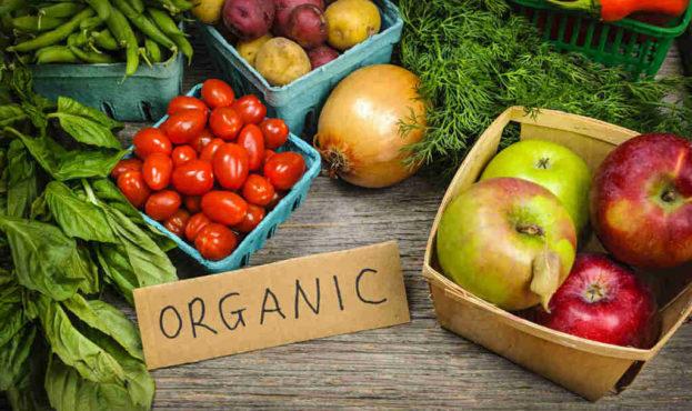 organic-18166