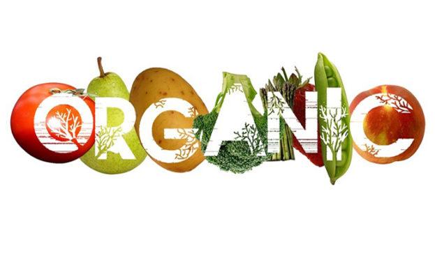 04563d5-organic1