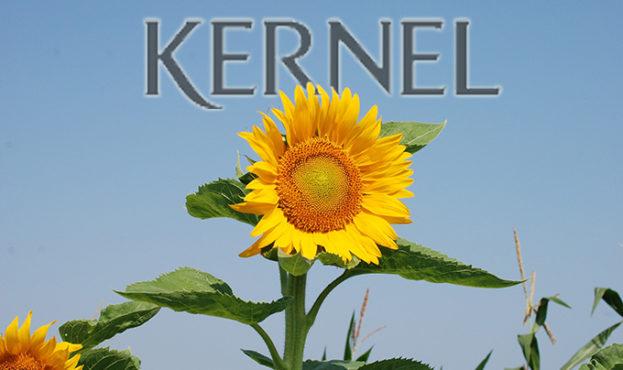 2f8f0bc-kernel