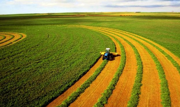 picture2_agrarii-prizvali-_366417_p0