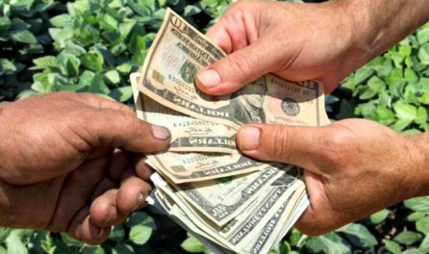 Government-bailing-out-farmers-feature