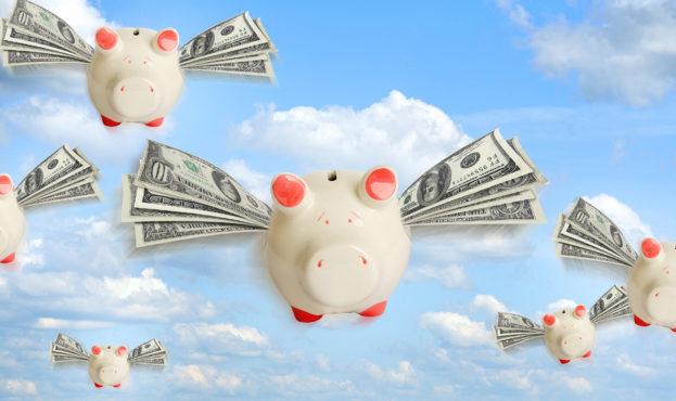Money_Domestic_pig_Dollars_Banknotes_Sky_Flight_531014_2560x1440 (1)