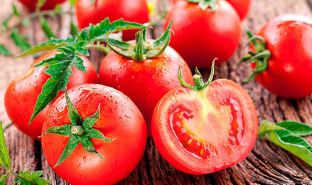 a37c811-tomatoes