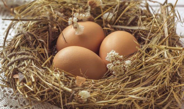 brown-eggs-hay-nest-rural-eco-background-with-brown-chicken-eggs-straw-background-old-wooden-planks-top-view_8119-254