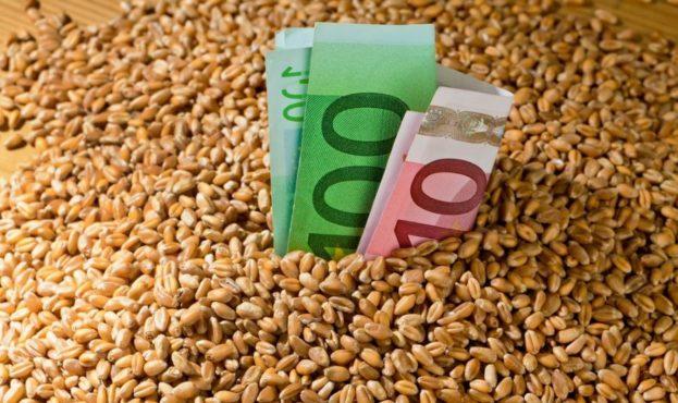 пшениця-в-євро
