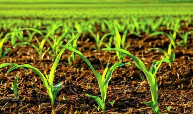 vhod_n-fix-crops-696x462