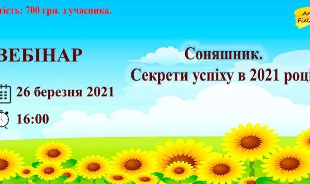 163059951_478641956839247_4555470705340076337_n