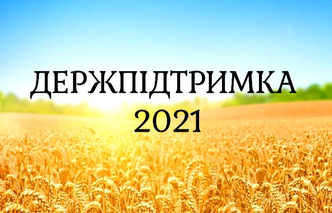 Держпідтримка АПК у 2021 році: озвучено останні зміни – AgroNews