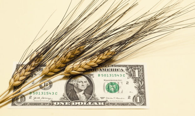 agriculture-concept-ears-of-wheat-on-a-banknote-of-an-american-dollar-closeup_117638-68