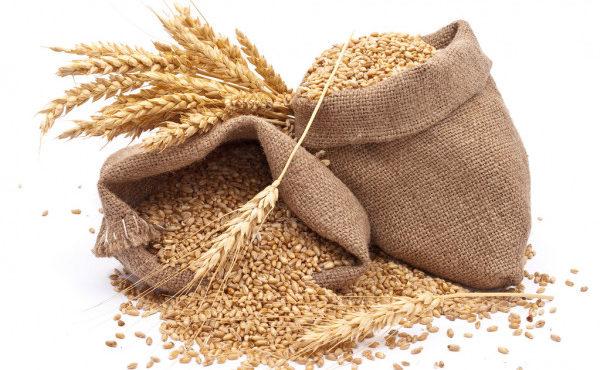 depositphotos_4411047-stock-photo-sacks-of-wheat-grains
