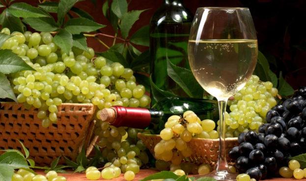 любительское-виноградарство