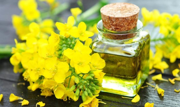 rapsoel-rapeseed-oil-by-photocrew-fotolia