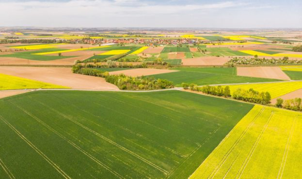 colorful-agricultural-fields-at-spring-aerial-dron-PHT2Z5M-min-2-scaled