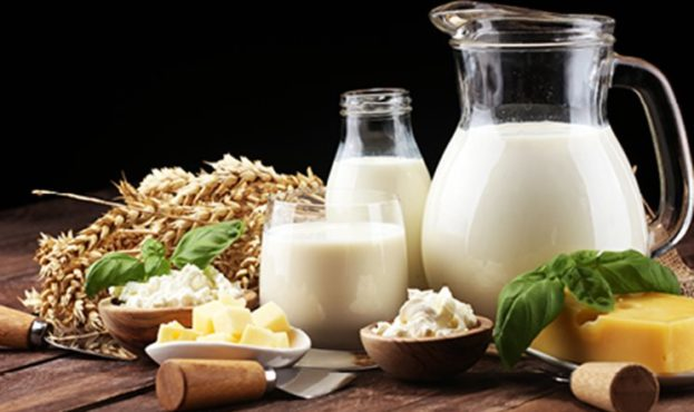 Fermented_milk _products_441x300px