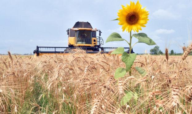 UKRAINE-RUSSIA-CONFLICT-AGRICULTURE