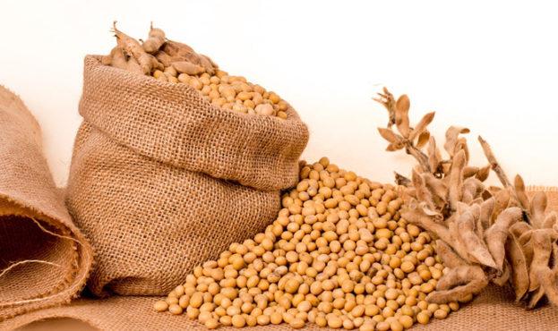 d182038-soybeans