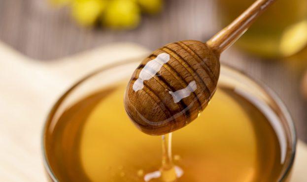 honey-4770245_1280 (1)