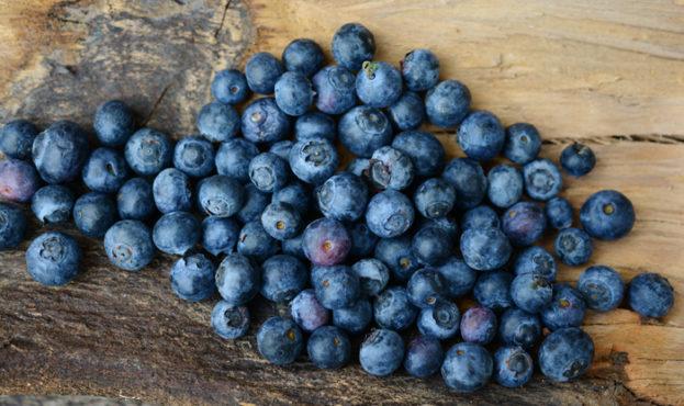 poleznye-svojstva-jagody