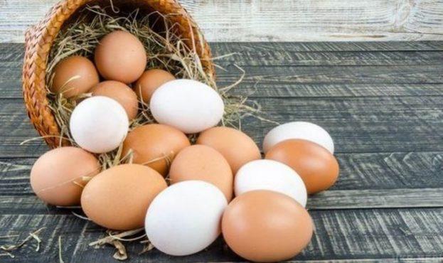 eggs_735x418