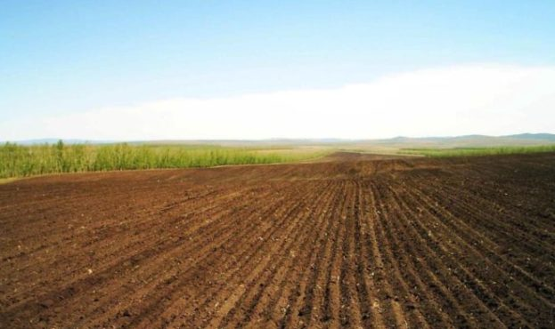 field_arable_land_lines_ranks_agriculture_54020_1366x768-696x392