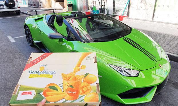 Mango-Lamborghini-3