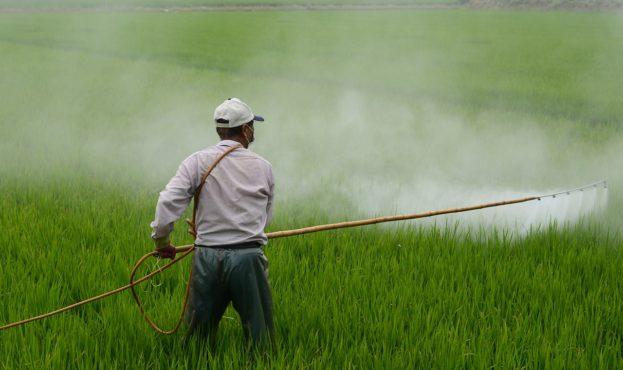 pesticide_1557870625