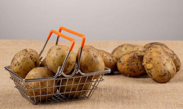 2021.07.12_potato