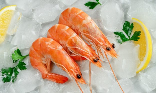 fresh-prawns-on-ice-with-parsley-and-lemon-slices-mediterranean-food-concept_106885-2501