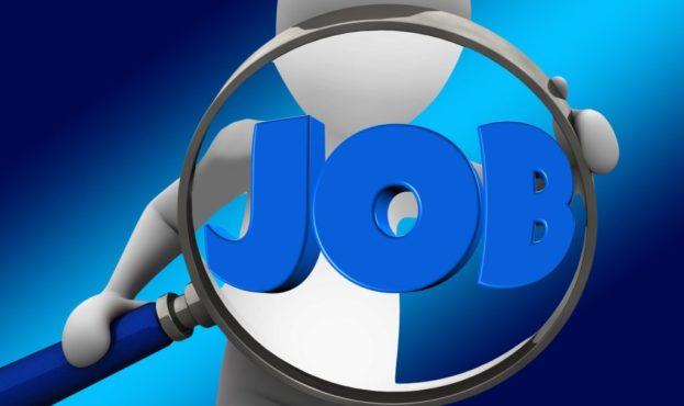 job-1024x698