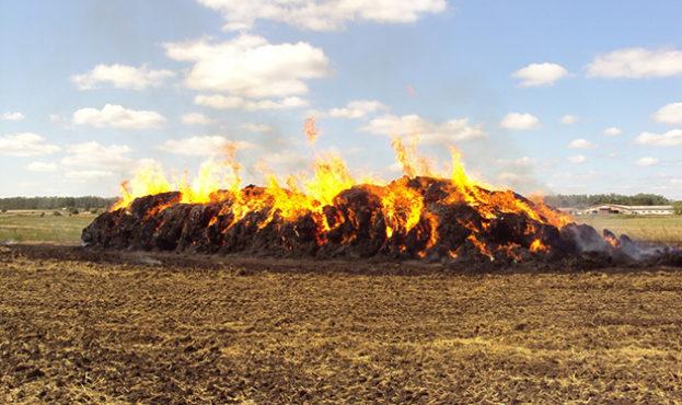soloma v ogne