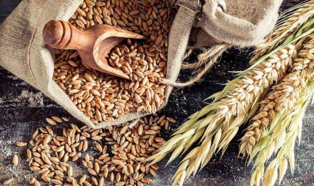 Whole-grain-rye-435634542452-740x416