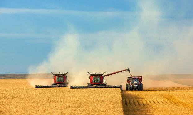 agrarnyi-sector