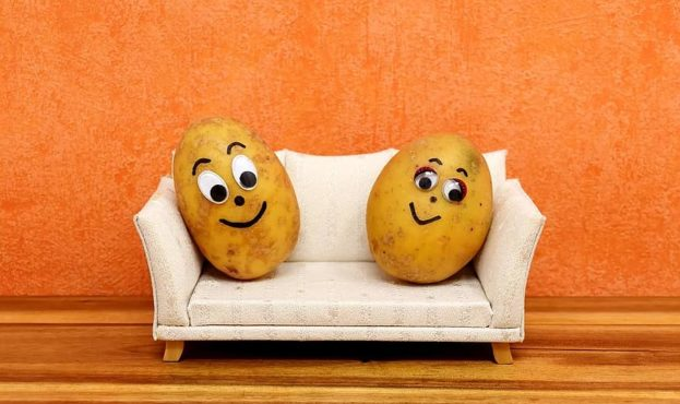couch-potatoes-funny-potatoes-lazing-around-sofa-couch-cute-faces-pair