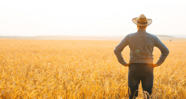 farmer-with-hat-on-his-head-in-the-wheat-field-overlooking-the-sunset_117255-1487