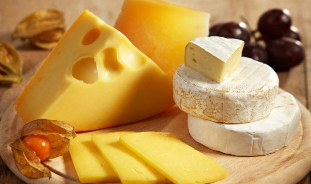 rabstol_net_cheese_40