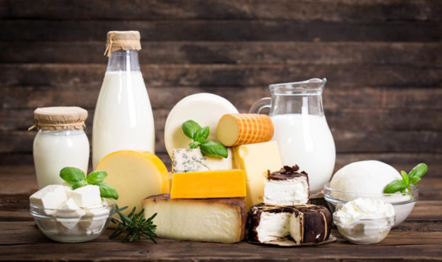 52117a5-dairy-products