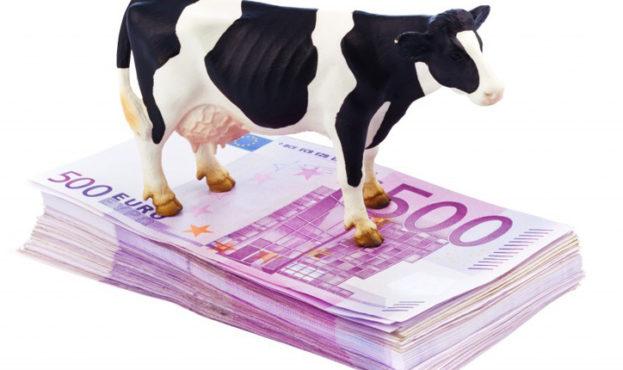 cow-EUR-724