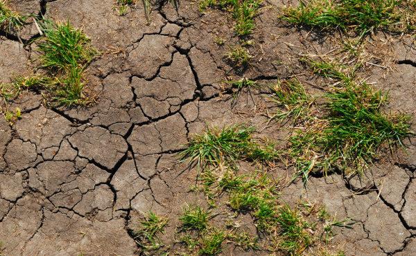 depositphotos_2861349-stock-photo-soil-erosion