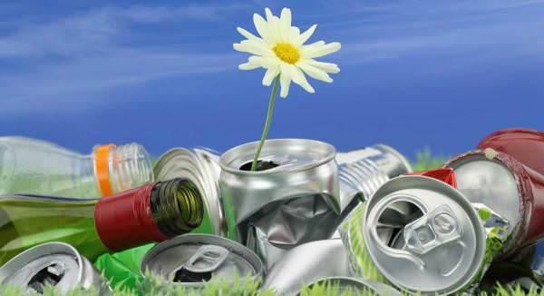 recyclingd_7747271_25522209