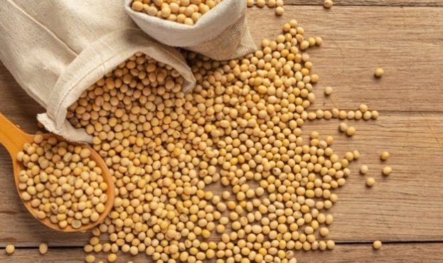 soybean-seeds-on-wooden-floor-and-hemp-sacks-food-nutrition-concept_1150-26328