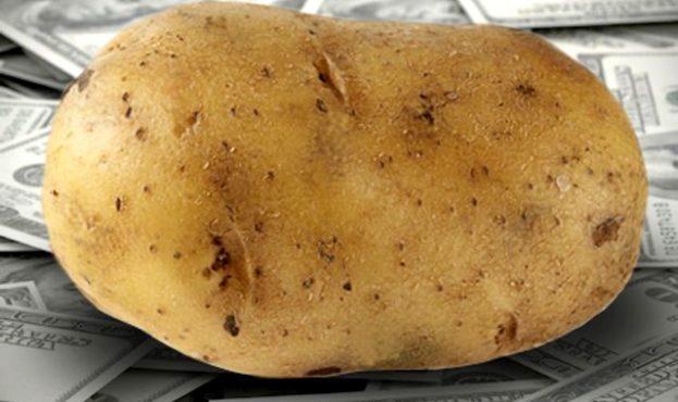 cash_potato_square