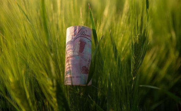 latifundist-com--money-121750